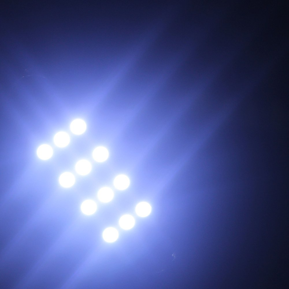 12-SMD 1210 3528 Chip Rigid Loop Festoon LED Bulbs for Car Interior Light Dome Map Light Door Courtesy Lights 561 562 567 1.73 GrandviewTM 4 X 44mm White