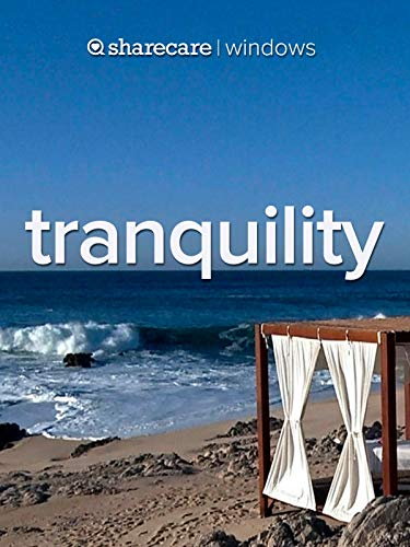 Tranquility (Maximum Protection Brief)