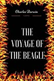 The Voyage of the Beagle: By Charles Darwin - Illustrated