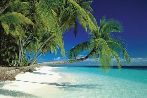 Maldives Beach Poster Print