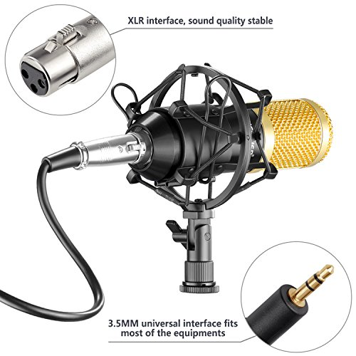 Neewer NW-800 Professional Studio Broadcasting & Recording Microphone Set Including (1)NW-800 Professional Condenser Microphone + (1)Microphone Shock Mount + (1)Ball-type Anti-wind Foam Cap + (1)Microphone Power Cable (Black) - Image 7