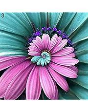 Chrysanthemum Zaden, 100 Stks/zak Chrysanthemum Zaden Ornamental Desktop Decor Meerjarige Bonsai Bloem Tuin Zaailingen voor Tuin voor Ideaal Outdoor Tuinieren Cadeau, Groeien Uw Eigen Tuin