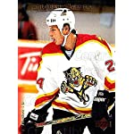 (CI) Robert Svehla Hockey Card 1995-96 Upper Deck (base) 172 Robert Svehla ceae33b1a
