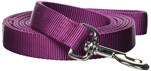 Image of Hamilton Double Thick Nylon Dog Training Lead Total Length Including Loop Handle, 1-Inch by 6-Feet, Wine