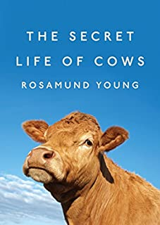 Book Cover: The Secret Life of Cows