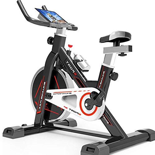 LQUIDE Indoor Cycling Exercise Bike, Direct Belt Driven 10kg Flywheel Magnetic Resistance 7-Function Monitor Heart Rate Sensors Adjustable Seat ()
