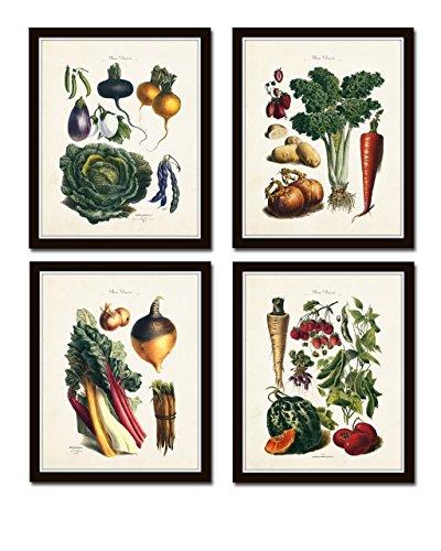 French Vegetable Print Set 4 Giclee Vintage Vegetable Prints Home Decor Wall Art - Unframed