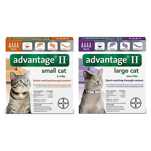 Bayer Advantage II Flea Control Treatment for Cats 51lcUBKElDL
