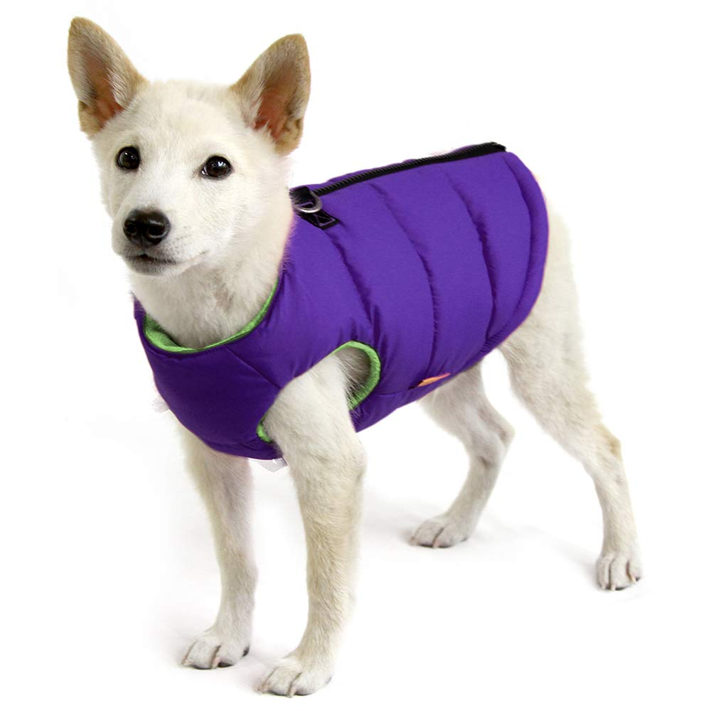 Gooby - Padded Vest, Dog Jacket Coat Sweater with Zipper Closure and Leash Ring, Solid Purple, Small by Gooby