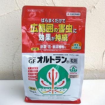 Amazon.co.jp: 殺虫剤:オルト...
