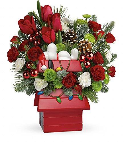 Snoopy's Christmas - Farm-Direct Fresh Flower Arrangement – Deluxe
