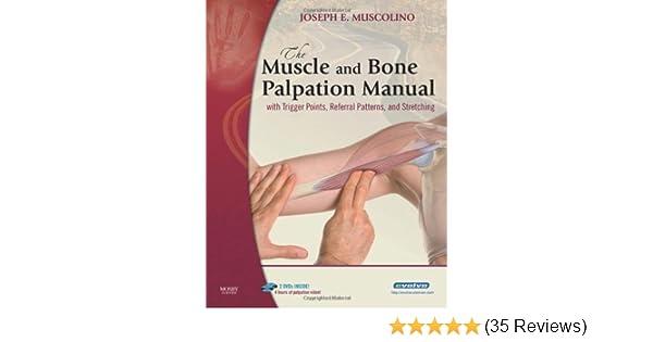 Biceps And Triceps Tendon Rupture U2013 Core Em Manual Guide