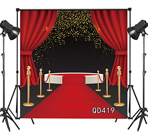 LB Red Carpet Backdrop for Photography 10x10ft Graduation Backdrop Party Stage Celebrate Photo Background Customized Vinyl Studio Prop QD419 (Photo Stage)