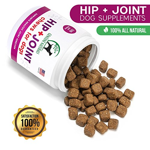 Genuine Naturals™ Glucosamine Chondroitin, MSM, Organic Turmeric Soft Chews by, Hip and Joint Supplement for Dogs, Supports Healthy Joint Function and Helps With Pain Relief, 120-Count by Genuine NaturalsTM (Image #9)