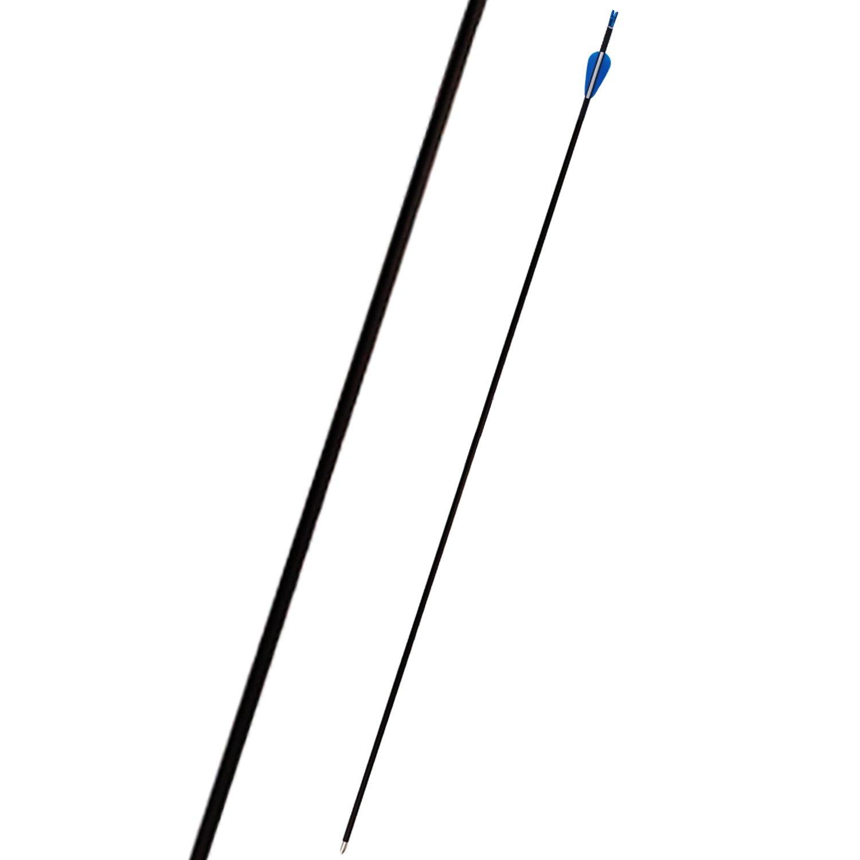 100% Carbon Arrows 700 Spine Fletched 1.75