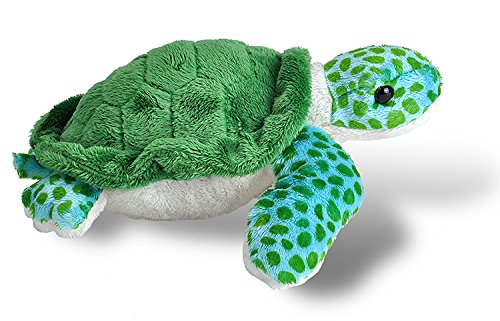 "51lcx1HySAL - Wild Republic Plush Toy, 8"", Sea Turtle"