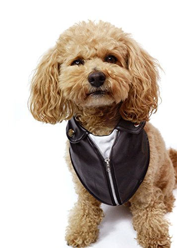 Tail Trends Motorcycle Leather Jacket Dog Bandana (M) by Tail Trends