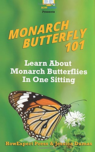 Monarch Butterfly 101: Learn About Monarch Butterflies In One Sitting