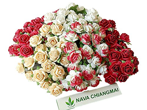 NAVA CHIANGMAI Artificial Mulberry Paper Rose Flower Mixed Color Tone Decorative Flowers for Crafts, Scrapbook Flowers Embellishments,Paper Craft Scrapbooking Flowers,Mini Decorative. (Red (Decorative Mulberry Paper Flowers)