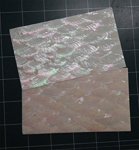 Donkey ear (Angel Wing) abalone shell inlay veneer 9.5 x 5.5 x 0.006 inch