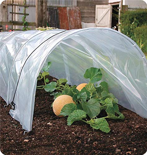 Agfabric 6Mil Plastic Covering Clear Polyethylene Greenhouse Film UV Resistant for Grow Tunnel and Garden Hoop, Plant Cover&Frost Blanket for Season Extension, W20'xL36' by Agfabric (Image #7)