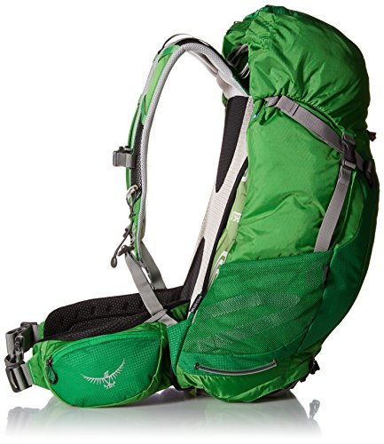 Osprey Packs Stratos 36 Backpack (2016 Model), Pine Green, Medium/Large by Osprey (Image #3)