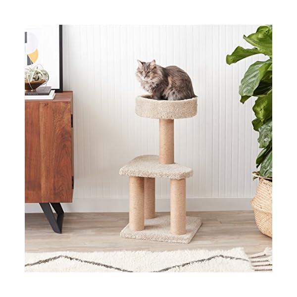 AmazonBasics Cat Activity Tree with Scratching Posts 2