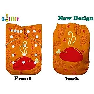 Lilbit Thanksgiving Day Print Reusable Cloth Baby Diaper (TH02)