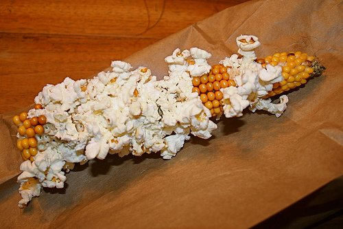 Two Bags Uncle Osgood's Popcorn on the Cob