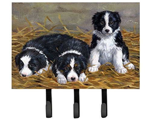 Caroline's Treasures ASA2196TH68 border Collie Puppies Leash or Key Holder, Large, (Large Collie)