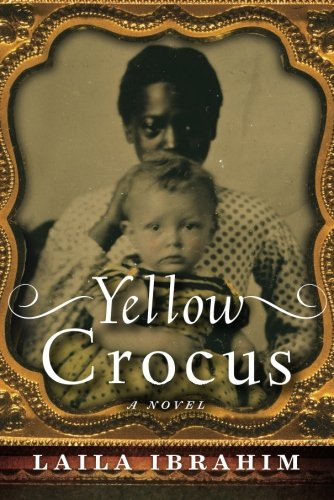Search : Yellow Crocus