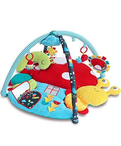 Little Bird Told Me My Little Sunshine Multi-Acivi Baby Playgym by Little Bird Told Me