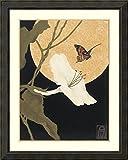 Framed Art Print 'Moonflower & Moth' by Anita Munman