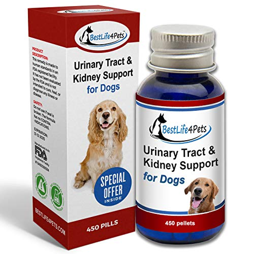 BestLife4Pets Dog UTI and Bladder Support; Natural Urinary Tract Infection Treatment Relieves Painful Urine Incontinence and Leaks, Reduces Bladder Infections, Prevents Pet Kidney Disease and Stones
