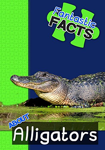 Fantastic Facts About Alligators: Illustrated Fun Learning For Kids