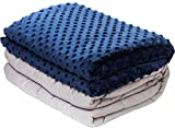 10lb Weighted Blanket with Dot Minky Cover for Kids Teens (Inner Light Gray/Cover Navy Blue & Gray, 48