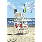 Toland Home Garden Pelican Post Decorative USA-Produced House Flag, 28 by 40-Inch