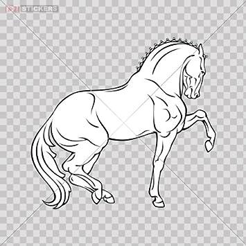 Amazon.com: Sticker Horse Galloping Color Print (8 X 7.4 Inch) X4c52 ...