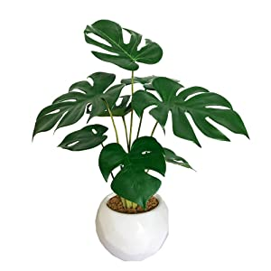 BESAMENATURE Little Artificial Monstera Plant, Tabletop Artificial Plants for Home Decor, 14-inch Tall, Ships in White Ceramic Planter
