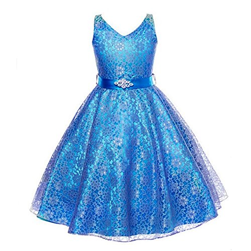 Girls Wedding Dress Bridesmaid Tull Sleeveless Lace Dress ... (Sparkly Fancy Dress)