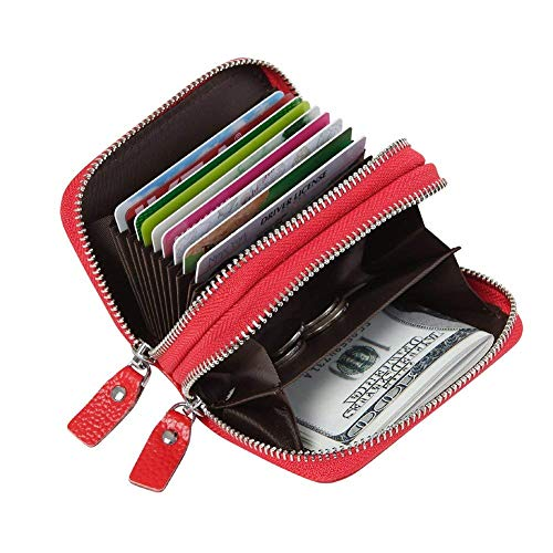 Artwell Genuine Leather RFID Credit Card Holder Wallet Double Zipper Small Purse Case Organizer for Women Men ()