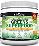 Health & Personal Care : Organic Super Greens Powder - 3 Servings of Veggies per Scoop | 45+ Green Superfoods (Wheat Grass, Chlorella, Spirulina & More) + Probiotics & Digestive Enzymes - Keto Friendly Vegan Supplement
