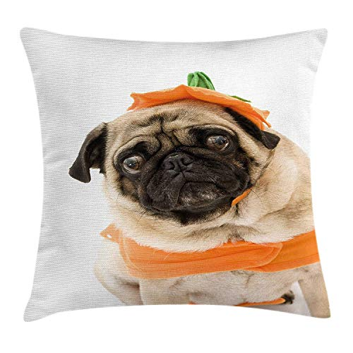 XGUPKL Pumpkin Throw Pillow Cushion Cover, Pug with a Pumpkin Costume for Halloween Trick or Treat Cute Animals Photo, Decorative Square Accent Pillow Case, 18 X 18 inches, Ivory Orange Black ()