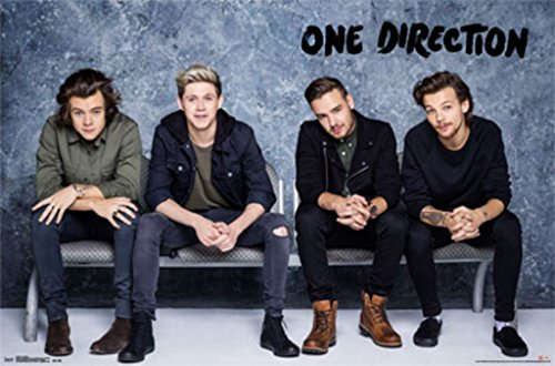 """Trends International One Direction Bench Wall Poster 22.375"""" x 34"""""""