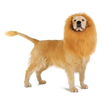 TAOtTAO Lion Mane para perro disfraz con regalo Lion cola de león peluca para perro