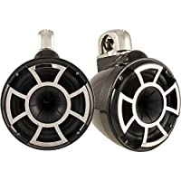 Wet Sounds Revolution Series 10 inch HLCD Wakeboard Tower Speakers - Black w/ Fixed Clamp