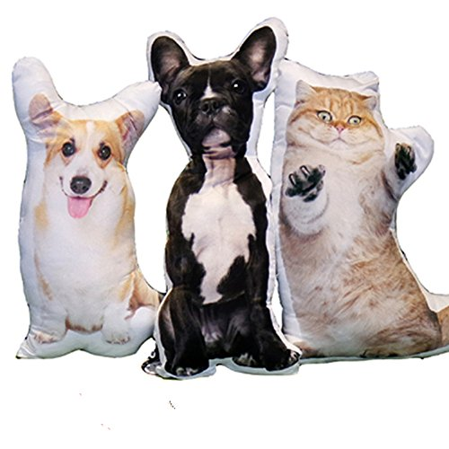 Personalized pet Dog Cat pillow (23.623.6 inch)