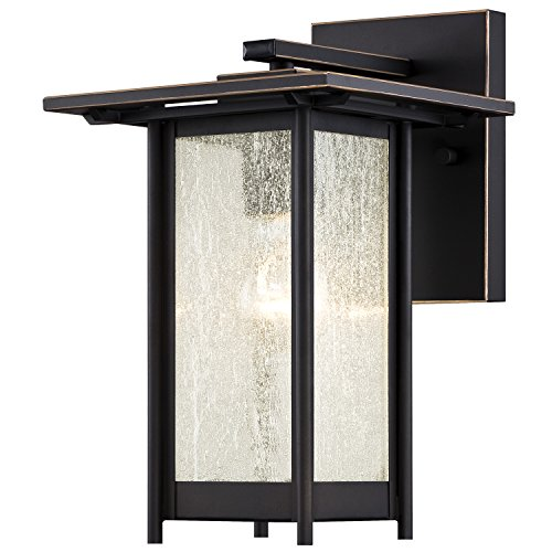 Westinghouse 6203900 Clarissa 1 Light Outdoor Wall Lantern, Oil Rubbed Bronze - Rubbed Bronze Lantern