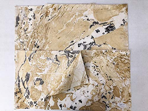 (Contemporary Black and Gold Marble Porto Reversible Placemats,13