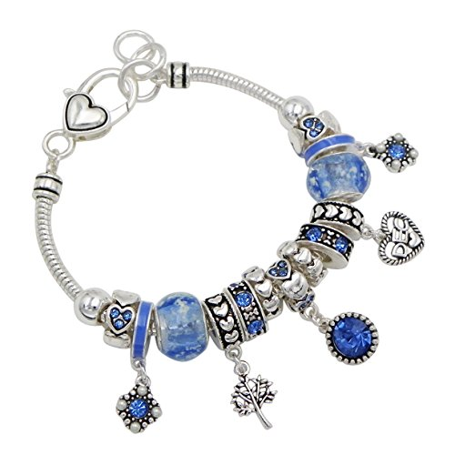 Rosemarie Collections Women's Birth Month Birthstone Glass Bead Charm Bracelet (December)